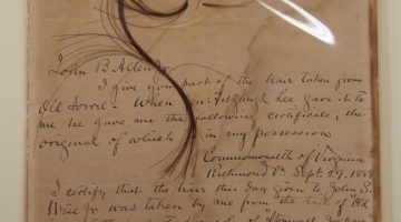The Curious Life of General Jackson's Horse's Hair