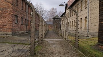 Picture of barbed wire fencing and buildings from the Auschwitz-Birkenau Extermination Camp