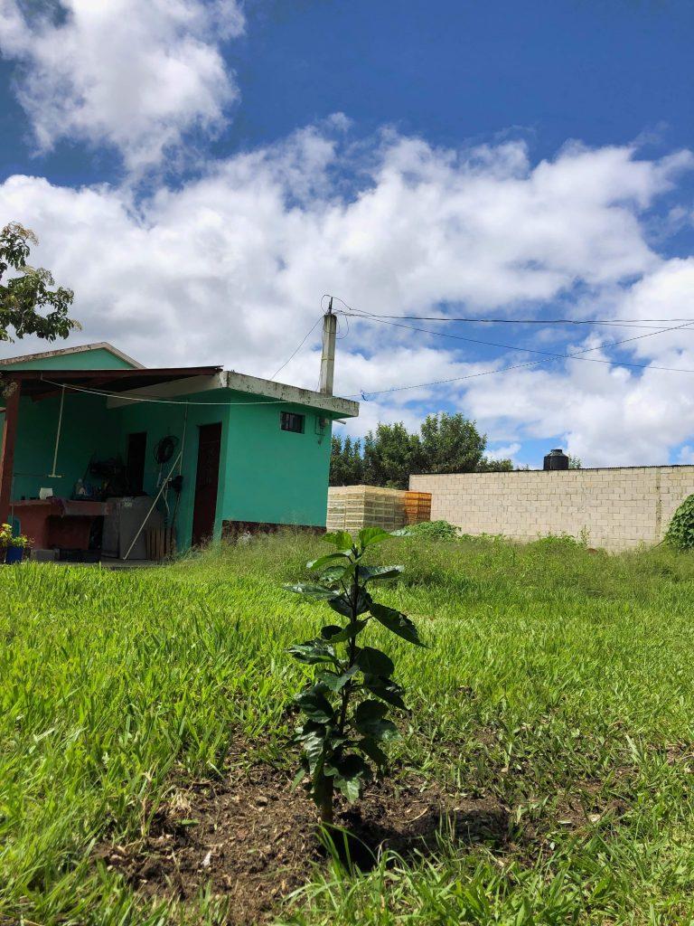 Family home. Huehuetenango (City), Guatemala.