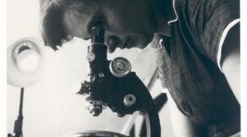 Rosalind Franklin and Her Contributions to the Discovery of the Structure of Deoxyribonucleic Acid