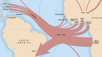 Mapping The Slave Trade: The New Archive (No. 10)