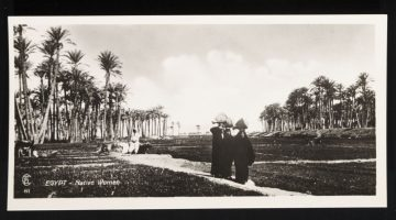 Visitors of the Nile: The New Archive (No. 13)