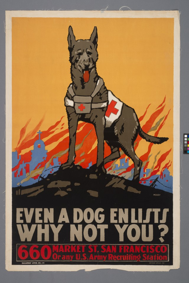 Even.a.dog_.low_.res_