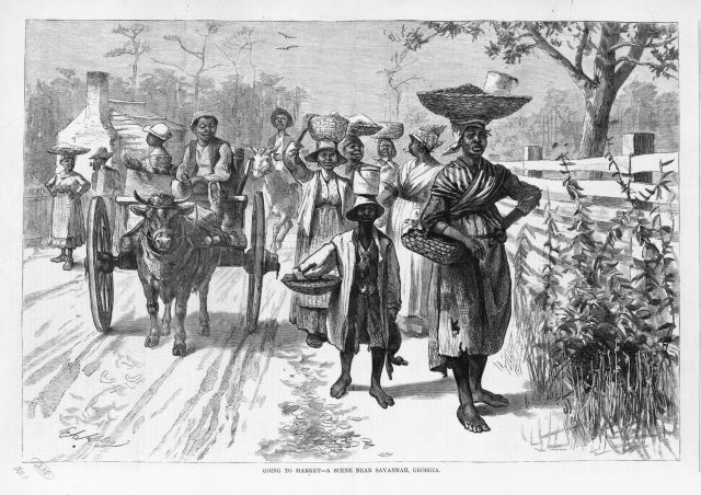 Going to Market- A Scene Near Savannah, Georgia. Harper's Weekly, 1875 Courtesy of the Library of Congress, Miscellaneous Items in Hight Demand collection, Prints and Photographs Division, LC-USZ62-102153