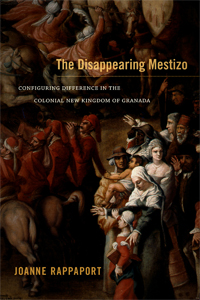 Disapearing Mestizo cover