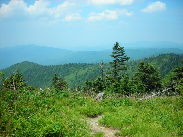 appalachian_trail_heading_to_double_springs_gap_from_clingmans_dome