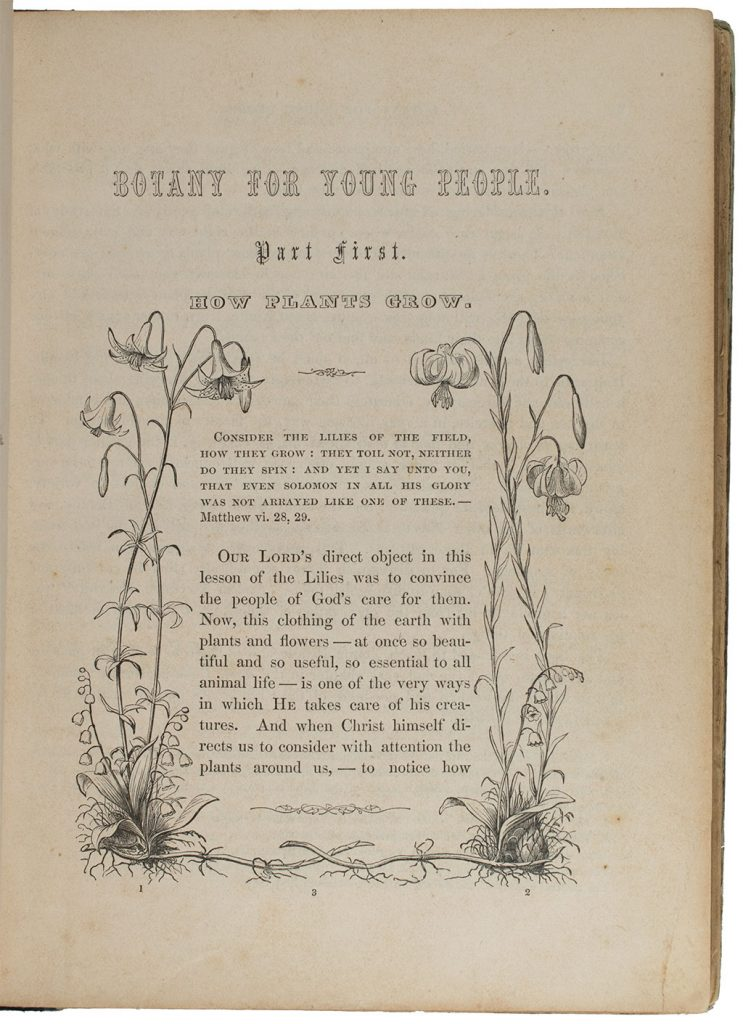 Asa Gray, Botany for young people and common schools. How plants grow, a simple introduction to structural botany (New York: Ivison and Phinney, 1859), p. 1. Lundell Botanical Library, Harry Ransom Center, QK 47 G7 1859 LUN.