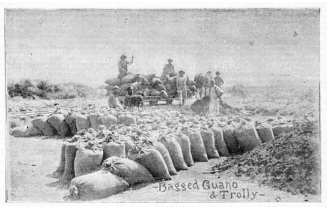 Bags of guano ready for removal from an island on the Houtman Abrolhos