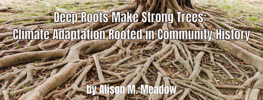 Deep Roots Make Strong Trees: Climate Adaptation Rooted in Community History