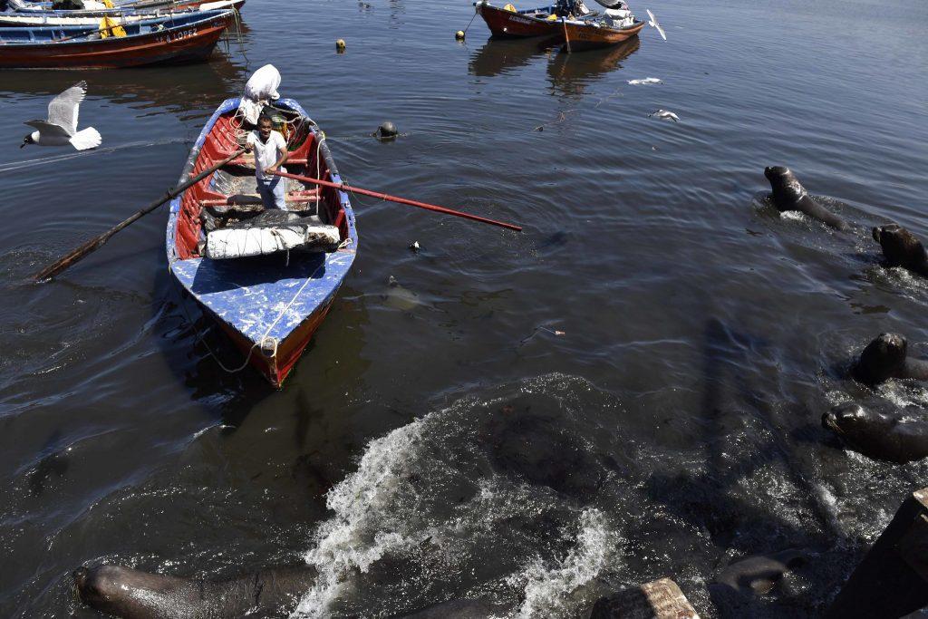 Fishermen in Iquique