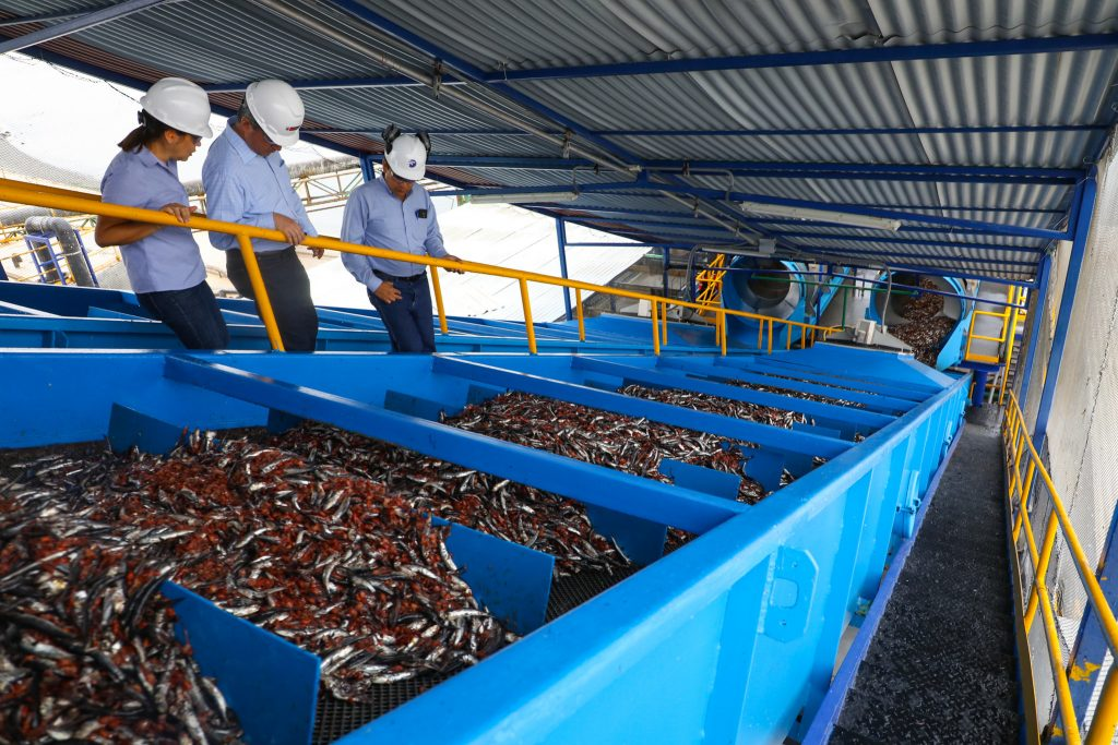 Government officials tour a fishmeal processing plant in Peru