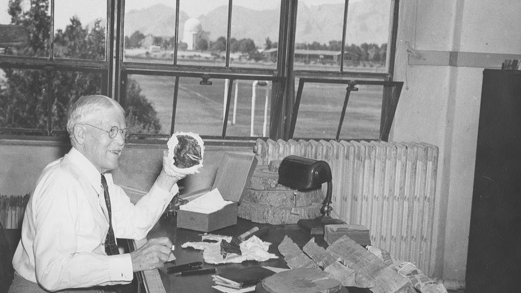 Andrew Ellicott Douglass working at his desk in the Laboratory of Tree-Ring Research