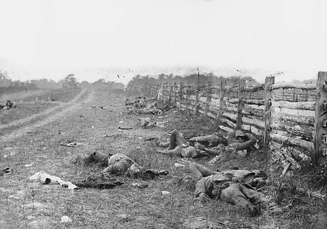 Black and white image showing dead Confederate soldiers by a fence at the Hagerstown Turnpike after the Battle of Antietam