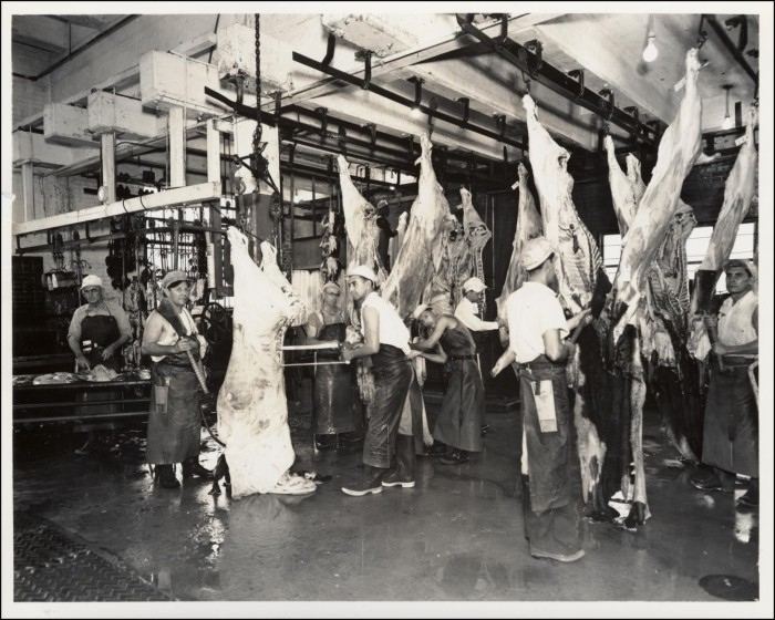 Black and white photograph of the Austin Abattoir's slaughter room from the Bureau of Identification